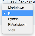 Prompt or Markdown Cell Selection